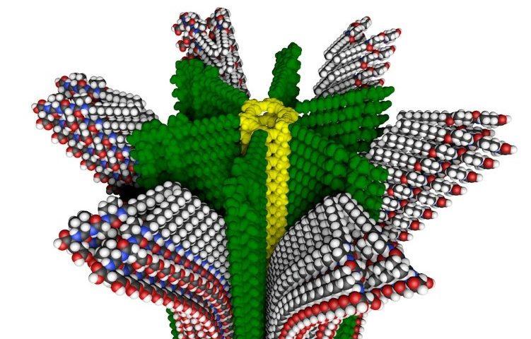 ساختار پلیمر